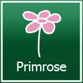 Primrose Promo Codes